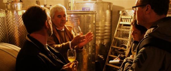 cellar again